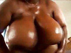BBW Big Boobs Big Butts Big Tits